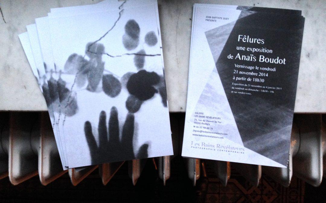 Exposition Anaïs Boudot à la galerie à partir du 21 novembre 2014